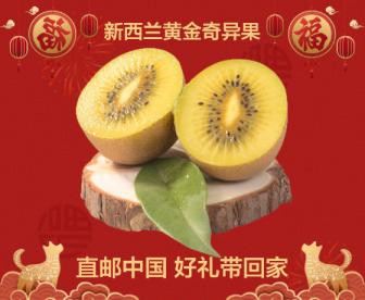 【直发中国】新西兰黄金奇异果12个装