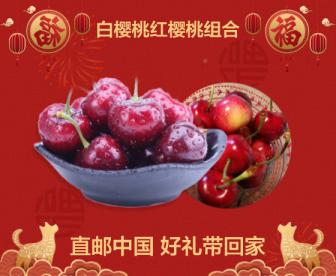 【直邮中国 白+红各1KG】手慢无!奢华享受!1红+1白=2KG 新西兰红樱桃+白樱桃限量发售!鲜果直径28+抢到就是赚到!