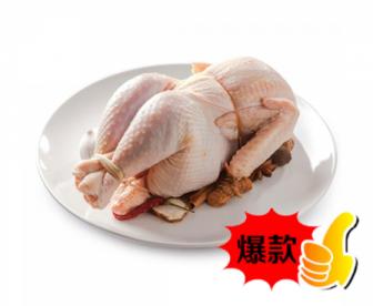 【爆款】现杀新鲜老母鸡1.1-1.3KG/只