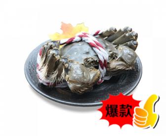 【爆款】熟冻香辣(已调味)大闸蟹六只装