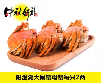 【中秋直发中国特价】阳澄湖大闸蟹母蟹每只2两