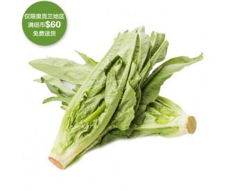 【疫情蔬果专区】油麦菜 500克【请单独下单,不要和其它专区商品混搭】
