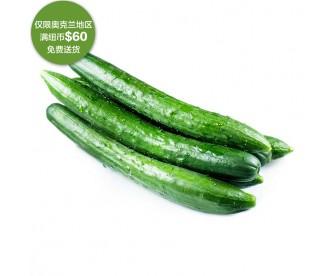 【疫情蔬果专区】中国黄瓜 500克【请单独下单,不要和其它专区商品混搭】