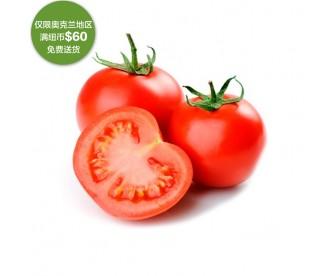 【疫情蔬果专区】番茄 1公斤【请单独下单,不要和其它专区商品混搭】