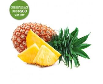 【疫情蔬果专区】菠萝 1个【请单独下单,不要和其它专区商品混搭】
