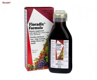 Floradix 铁元 补铁补血口服液 250毫升【每单限购2件】